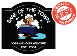 Bark of the Town Dog Grooming - North Andover, Massachusetts